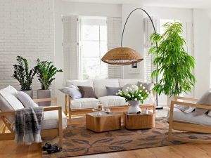 interior con plantas decorativas